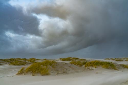 Horsduintjes Texel