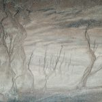 Zandwoud